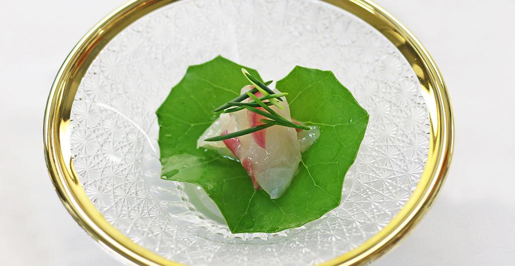 鳴門鯛(マダイ)のカルパッチョ スダチと藻塩と共に