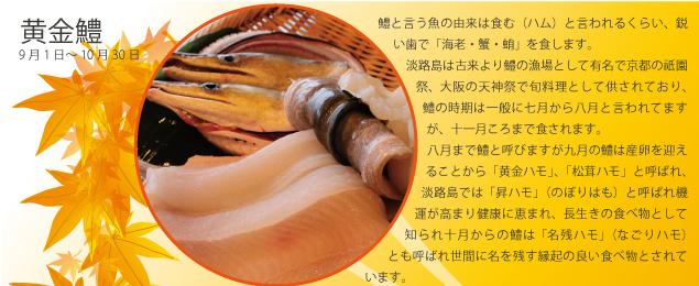 淡路島の秋味Promotion(黄金鱧)