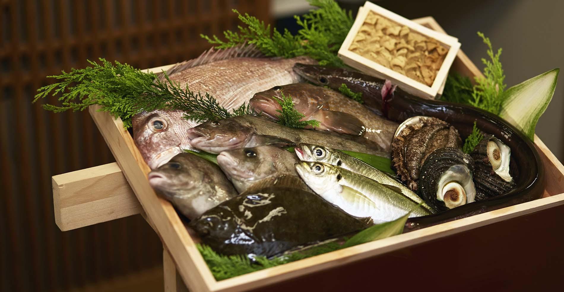 近海の鮮魚
